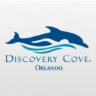 discovery cove logo